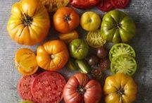 Tomatoes / We love tomatoes at Freshway! October is National Tomato Month