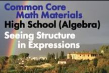 CCHS (Alg): Seeing Structure in Expressions / Common Core High School: Algebra. Seeing Structure in Expressions. Great teaching resources to help students 1) Interpret the structure of expressions. 2) Write expressions in equivalent forms to solve problems.