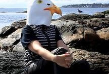 Seagull, Sex / The Soulmate