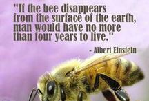 We Love Our Bees!