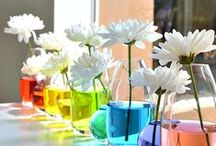COLOUR, COLOUR, COLOUR! / Want a colourful wedding. Find some inspiration here!