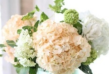 Flowers / Mostly flower arrangements!