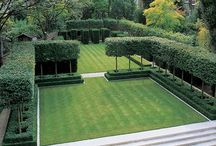 Garden / Gardens, Lawns, Hedges and landscaping