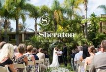 Sheraton La Jolla Weddings / Contact Shelby, our Wedding and Events Specialist, to help you plan your upcoming wedding at our gorgeous hotel. (858-452-4013)