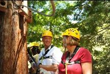 Sonoma Canopy Tours / Families and groups have a blast at Sonoma Canopy Tours!
