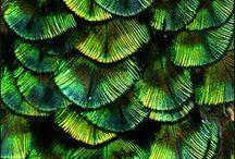 İlham Aldıklarımız - Doğa / Bisous Koleksiyonlarını yaratırken ilham aldığımız sonsuz kaynak: doğa!