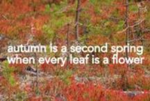 Lapland Autumn: Yes, I live in the fairy-tale land