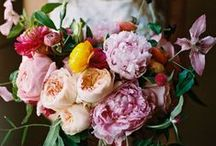 Wedding Flowers / Beautiful blooms for your big day...