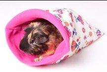 CandE Cosies Snuggle Sacks / A collection of our handmade snuggle sacks designed for guinea pigs, hedgehogs, rabbits, ferrets, rats, degus, chinchillas etc We can also custom make items for small cats and dogs. We can be found at http://www.candecosies.co.uk