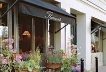 Flores stores