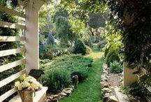 Trésor de Jardin / Schatten uit de tuin