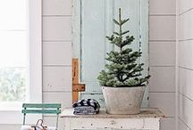 Trésor de Noël / Schatten van de Kerst