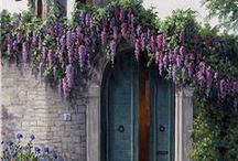 Trésor des Portes / Schatten van deuren