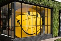 Great ideas for window displays