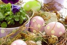 Easter-Spring / And he has risen! / by Vanessa Sheppard