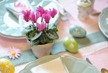 Facebook profil: Świat holenderskich kwiatów