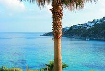My Greece (Mykonos -Tinos)