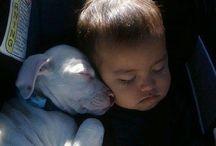 Adorable doggies&Kids