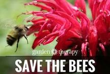 Save the bee's! <3