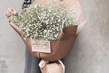 Balení květin