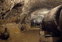 Vinos y Bodegas de Castilla y León / Imágenes de los buenos vinos y bodegas visitables que puedes encontrar a lo largo y ancho de este tierra que es Castilla y León