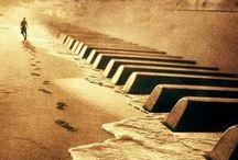 Music / Música