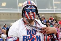 The Ultimate Fan / Think you love your team? You did until you saw these insane fans.