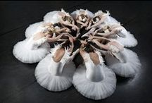 DANCERS / How beautiful is the shape of a dancer's body?