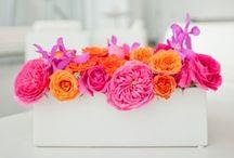 Floral Beauties / Unique Flowers that inspire