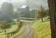 My country living memories / These are things I remember growing up in  Shenandoah Valley of Virginia . Up to age 12 , then we moved to the East Coast.  Cherished memory's  / by Lacey Irish