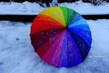 Rainbow power / The world would be sad without colors.