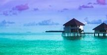 {asia pacific} / australia, new zealand & surrounding asian south pacific islands travel guides