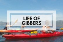 Life of Gibbers | Travel & Adventure