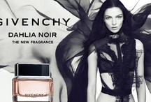 """Dahlia Noir (Givenchy) / From the house of Givenchy Dahlia Noir embodies the elegance and style of the couture brand under the leadership of its creative director Riccardo Tisci. The perfume is presented as a """"Fatal Flower"""" of unreal and imaginative composition for mysterious and fascinating women.  Dahlia Noir or the """"Black Dahlia"""" is a powdery fragrance of dusty chypre - floral structure. The advertising campaign features Tisci's muse, model Mariacarla Boscono as the sensual and dangerous """"Black Dahlia""""."""
