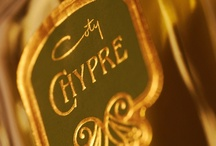 Chypre (Coty) / The chypre that started it all, Francois Coty's Chypre was so named as an homage to the scents that perfumed the island of Cyprus — a combination of woods, moss and citrus. Henceforth, thanks to this groundbreaking perfume, all perfumes in the chypre category contained some combination of a sparkling citrus note, floral heart notes, and rested on bases of vetiver, oakmoss, labdanum and patchouli.