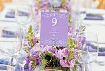Tablescape / by Meili Del Angel