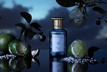 Sicilian Limes (Shay & Blue) / CAN PROVOKE VENDETTAS..... Ruthlessly risky. The home of the Mafia produces the finest limes in the world. This Casanova of a fragrance is sharply tangy, a fizz of acidic citrus on the tongue with a shot of salt and danger.  Sharply turned out. Ready for action.  Created 2012, by Dom De Vetta and Julie Massé