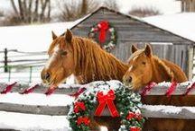 Valkoinen joulu / Joulu on ihanaa ja tunnelmallista aikaa!