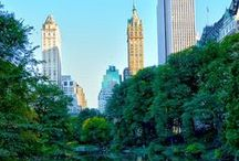 ✈ New York ✈ / ✈ This board is dedicated to show all the wonderful and beautiful things about New York. So that you can get inspired to visit this incredible place one day ✈