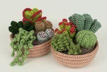 cactus uncinetto / uncinetto