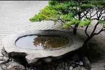 Chrissy's Dream Zen Garden