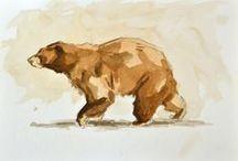 Bears / Bears :P