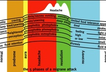 Physiology / stages, symptoms ~ anatomy