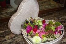 San Valentine´s Day / flores, rosas, regalos, ideas para San Valentin