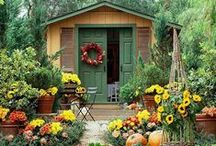 Bittersweet (FALL) Cottage / by Willow ~