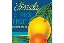 Florida Grown ~ Crate Labels / by Willow ~