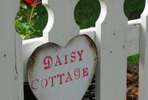Daisy Cottage / Shabby and chic decorating ideas. / by Willow