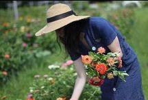 Gatherer / harvesting the goodness of nature