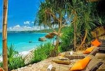 Tropical Decor & Living / Lovely tropical homes and getaways near the sand and surf, coconut trees and exotic flowers. All make for a relaxing tropical lifestyle. / by Willow ~