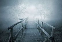 Enchanted & Mystery